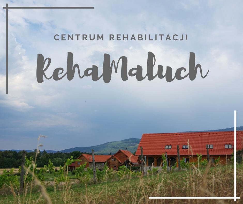 Oferta - Turnusy Rehabilitacyjne w Górach i Rehabilitacja Dzieci